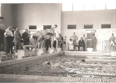 1427-schwimmwettkampf
